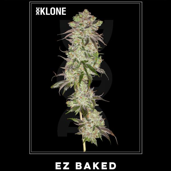 EZ Baked