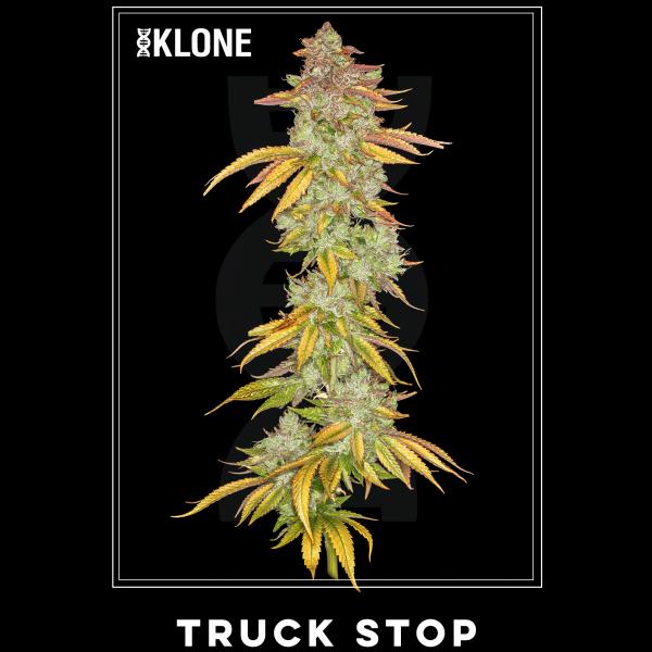 Truck Stop #7