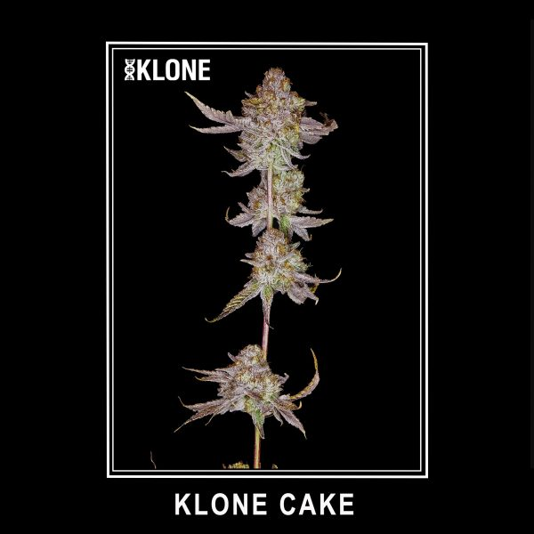 Klone Cake